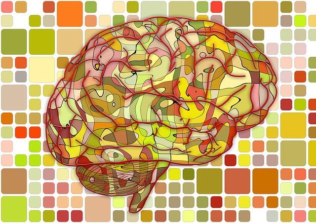 Brain - CVA - cerebrovascular accident - Stroke